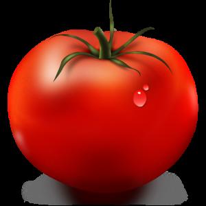 Logo des Programms Tomate